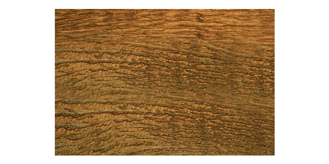 Wood-texure-006