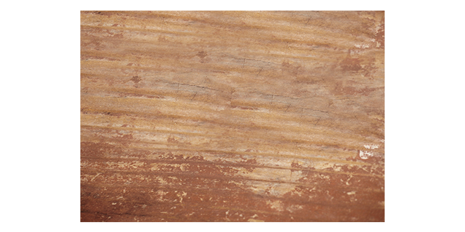 Wood-texure-012