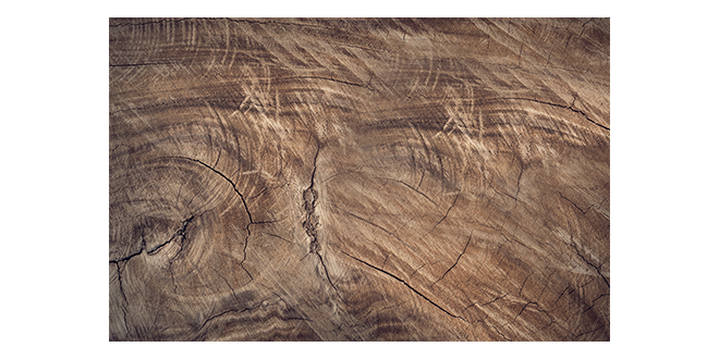 wood texure 001