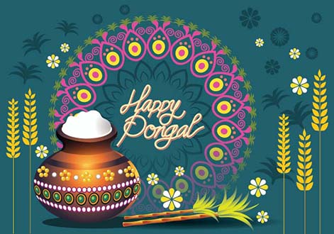 Pongal Background 003