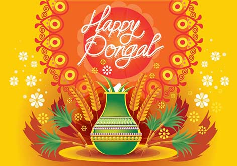 Pongal Background 004