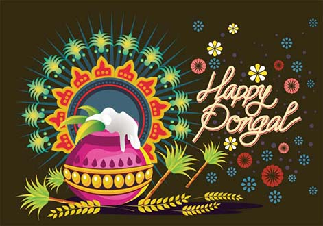 Pongal Background 005