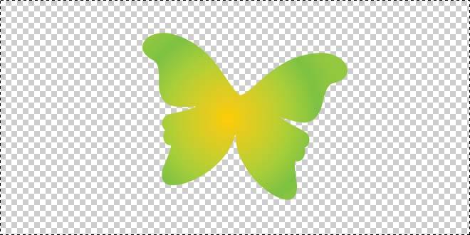 Butterfly 177