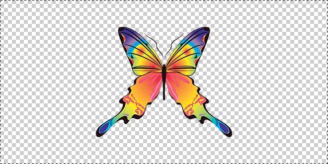 Butterfly 184