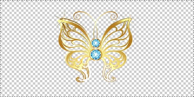 Butterfly 187