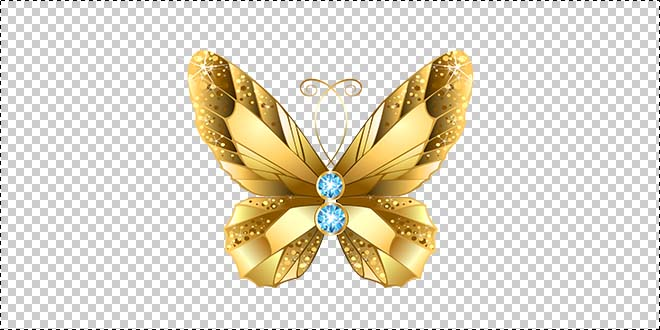 Butterfly 188