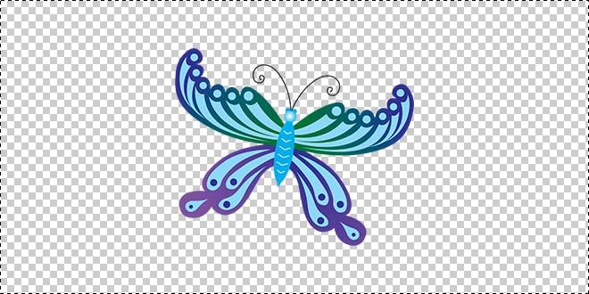 Butterfly 191
