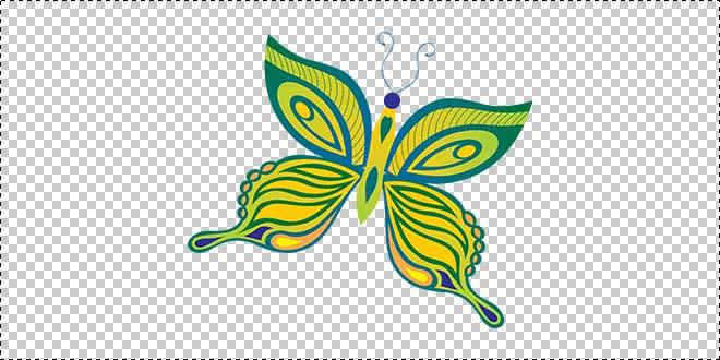 Butterfly 192