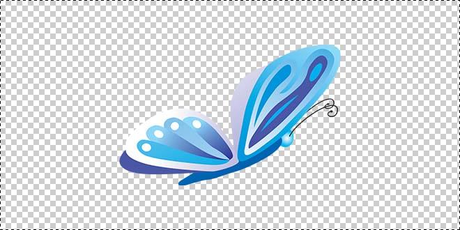 Butterfly 194