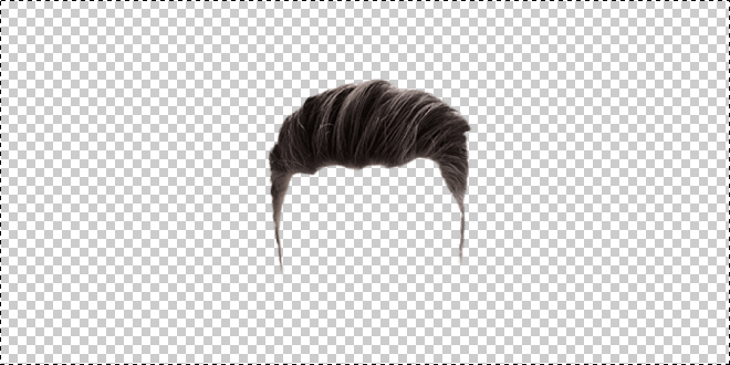 Hairstyle 0010