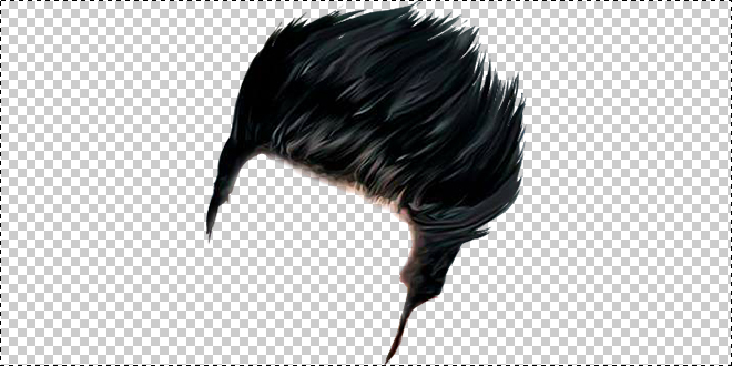 Hairstyle 009