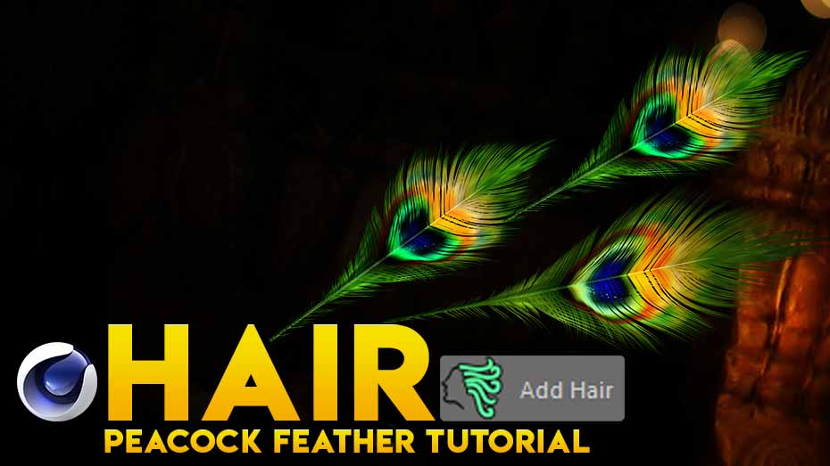 HOW TO MAKE PEACOCK FEATHER IN CINEMA 4D- TAMIL TUTORIAL